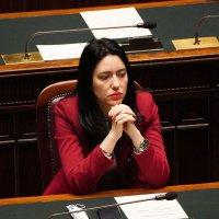 Gli insulti sessisti del senatore di Forza Italia contro la Azzolina