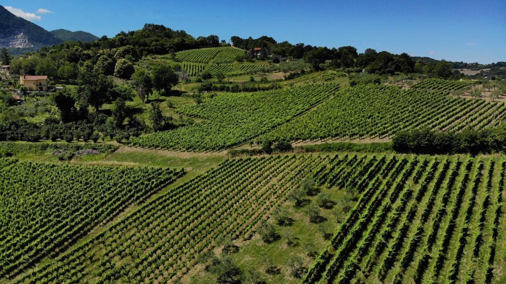Wine Trekking il 16 agosto a Lapio. Degustazioni, passeggiate a piedi e a cavallo nel Borgo del Fiano